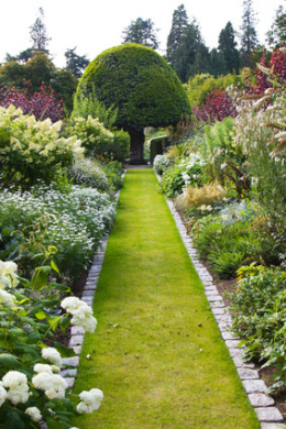 Garden Care - Maintenance and Landscaping